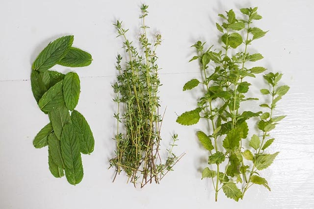 Peppermint, Parsley, and Sage